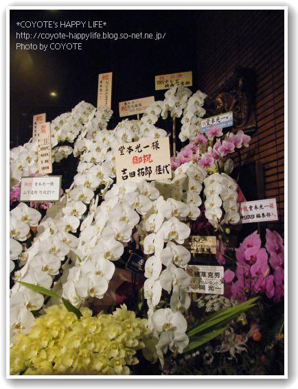 お花もたくさん.JPG