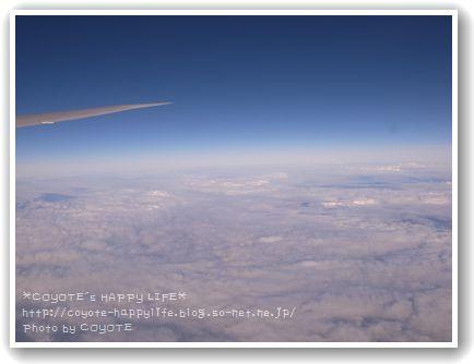 飛行機からパチリ.JPG